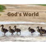 God's World-